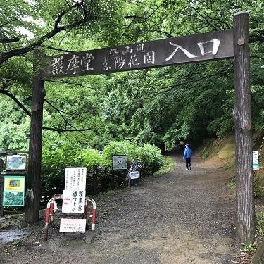 護摩堂山でアジサイ鑑賞