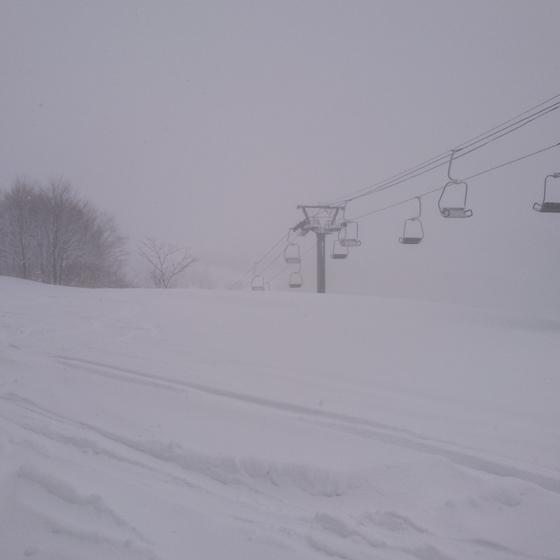 大雪の正月です